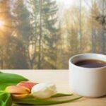Characteristics of a True Healer – Morning Tea ktd-012