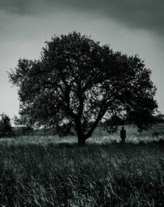 Individual standing under an oak tree in a field